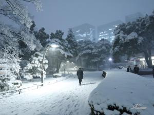 雪の日比谷公園